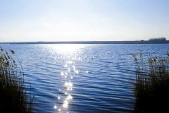 Lacul_Amara